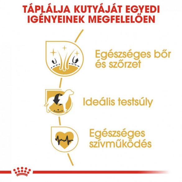 ROYAL CANIN BHN COCKER ADULT (3kg)