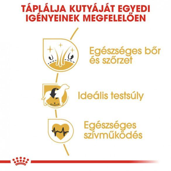 ROYAL CANIN COCKER ADULT 3kg Száraz kutyatáp