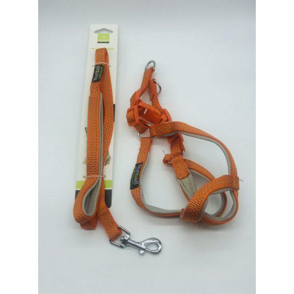 Kutyahám szett, neoprén béléssel - kb. 60-70cm körméret + 3x110cm póráz NARANCSSÁRGA